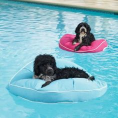 Comfy Kai Round Pet Float...lets your dog stretch out and unwind on the water after a hard day of fun!