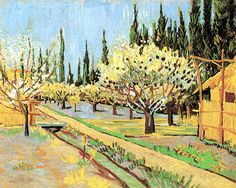 Vincent van Gogh. Orchard in Blossom, Bordered by Cypresses.  Oil on canvas.  Arles: April, 1888. New York:  Collection of Richard J. Bernahard.