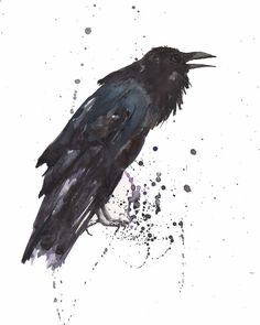 Google Image Result for http://images.fineartamerica.com/images-medium-large/raven-black-bird-gothic-art-alison-fennell.jpg