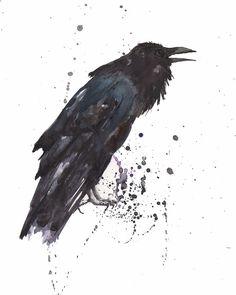 raven-black-bird-alison-fennell