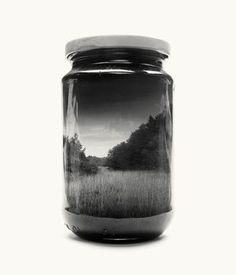 Reed from Jarred & Displaced, a series by Finnish photographer Christoffer Relander