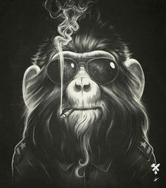 Smoking Monkey (or what a hippie would like on planet of the apes)