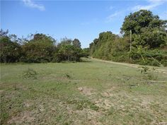 DRASTIC PRICE REDUCTION! REDUCED FROM $272,000 TO $208,000! ONLY 1.3 MILES TO THE CURRENT RIVER! 160 acres with 60 open and seeded acres & rest wooded. Pretty pasture & large pine trees. 2 big ponds, 2 small ponds. Electric is on the property, phone lines are on the road. Fenced and cross fenced. National Forest on 1 side plus Pioneer Forest land on 3 sides. Great hunting property plus beautiful building sites. Close to the Sunklands Conservation Area. Lots of fun, so close by in Salem MO