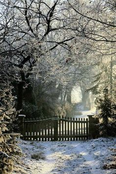 ❄️ Open the gate and let me walk through the silence of winter wonderland.where the reflective snow drops shimmers and glistens into tiny sparkles of diamonds. Winter Szenen, I Love Winter, Winter Magic, Winter Is Coming, Winter Time, Winter Christmas, Winter Light, Merry Christmas, Hello Winter