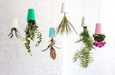 Cheap Christmas Gifts For Women Hanging Planters, Planter Pots, Indoor Planters, Upside Down Plants, Magazine Deco, Plastic Planter, Christmas Gifts For Women, Cool Plants, Air Plants