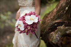 Cymbidium and Orchid