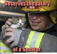 The fireman, not the kitten