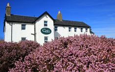 Coll Hotel Review, Isle of Coll, Scotland   Travel Scotland Hotels, Scotland Travel, Best Hotel Deals, Best Hotels, Cosy Room, Local Seafood, Park Restaurant, Weather Day, Scottish Islands