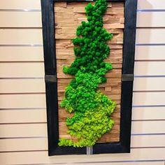Вертикальное озеленение (@greenmoss48) • Фото и видео в Instagram Ladder Decor, Outdoor Structures, Home Decor, Decoration Home, Room Decor, Home Interior Design, Home Decoration, Interior Design