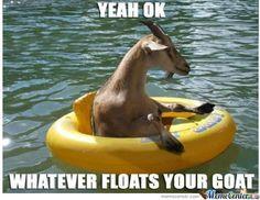 Whatever Floats Your Goat  (ht: memecenter.com)