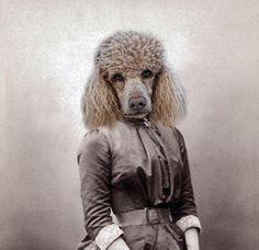 Monique  Vintage Dog 5x7 Print  Anthropomorphic  by AnimalFancy, $15.00