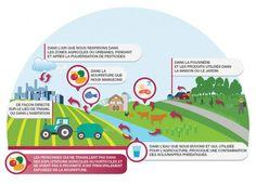 Illu-1.2_WEB Greenpeace. Toxicite des pesticides: un impact sur notre sante