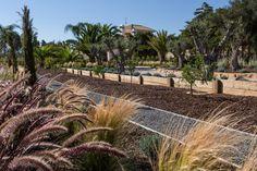 Modern Garden Design Algarve | Jardíssimo
