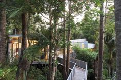 McCahon Artists Residence