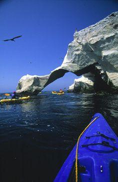 Elephant Arch, Santa Barbara Island, Channel Islands, off the coast of Ventura and Los Angeles, California by Chuck Graham