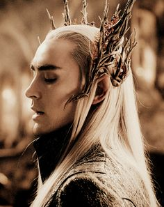 """""""Such is the nature of evil. Out there in the vast ignorance of the world it festers and spreads. A shadow that grows in the dark. A sleepless malice as black as the oncoming wall of night. So it ever was. So will it always be. In time all foul things come forth."""" -Thranduil, the Elvenking #thehobbit"""