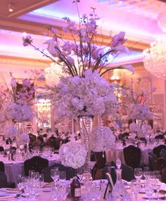 Large arrangements of all White Hydrangea, Roses, Calla Lilies and Cherry Blossom accented with suspended Kissingballs. The Venetian, Garfeild NJ