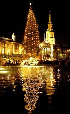 Christmas in Trafalgar Square, London Holidays In Norway, Norway Christmas, Christmas In The City, London Christmas, Christmas Time, English Christmas, Merry Christmas, Europe Christmas, Christmas Markets