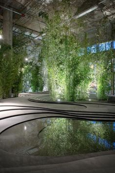 Sinuous, poetic, inspired and really beautiful – a stone and bamboo garden in…