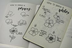 Liz @bonjournal_'s flower tutorials in her Bullet Journal