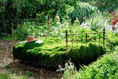 Jardin Gecko, JJ Derboux, jardinier paysagiste à Montpellier (Hérault) - Portfolio Créations Jardins