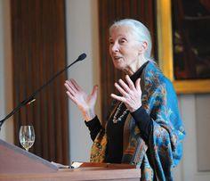 Jane Goodall...my hero....