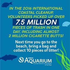 People are the solution to plastic pollution! Do your part on and every day to reduce plastic use. Shark Conservation, Energy Conservation, Birch Aquarium, Conservative Quotes, Save Our Oceans, Plastic Pollution, Picture Quotes, People, Solution