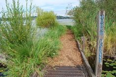 Arboretum Waterfront Trail is one of the coolest public spaces in #Seattle!