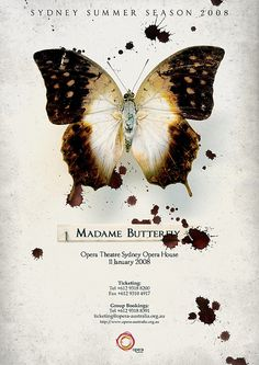 Madame Butterfly Poster by Scott Nolan