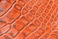 texture of genuine leather closeupembossed under the skin crocodile