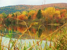 A splash of color on the Bras D'or Lakes, Cape Breton. Cabot Trail, Cape Breton, Travel And Leisure, Nova Scotia, Tour Guide, Lakes, Color Splash, Places Ive Been, Trip Advisor