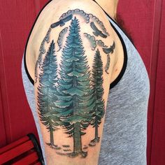 Pine Tree Tattoo. The tree is hands down one of the most important features on earth: it provides food, oxygen and even shelter. Man has also learned to revere the importance of a tree and it has therefore become very important. Although all trees have significance to life, there are some species which are more common, such as the maple, oak and pine trees.