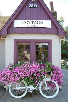 "Window Box full BIKE of beautiful, blooming petunias, Bicopia, and other annuals -""Cottage"" a vintage shop Maison Douce All Things Purple, Window Boxes, Window Seats, Vintage Bicycles, Petunias, Impatiens Flowers, Cottage Style, Garden Art, Indoor Garden"