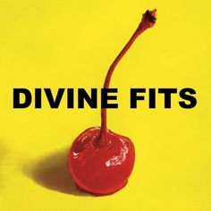Divine Fits: A Thing Called Divine Fits | Album Reviews | Pitchfork
