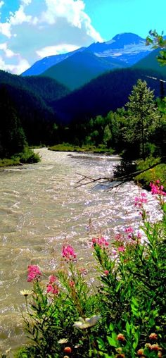 Rocky Mountain Stream.  With views like these, who needs anything else to be high?  ;p