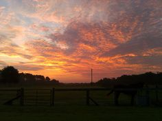 Sunrise at Patchuk Farm, Monticello, Florida