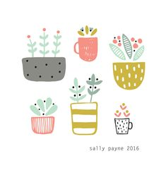 patterned plants: Sally Payne