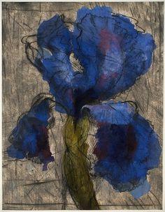 William Kentridge  Iris  1994