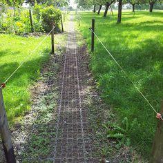 paddock paradise. Zulke matten zijn handig zodat de paden goed blijven.