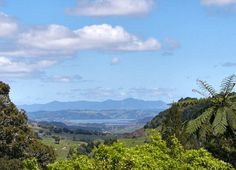 View of the Hokianga above Okaihau