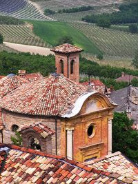 Piedmont, home to Barolo, Barbaresco, Arneis and others.