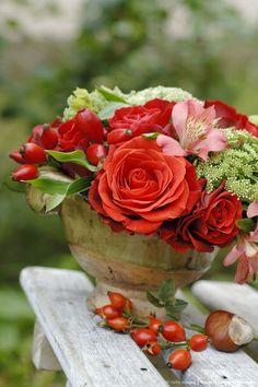 Rose, Freesia & Berry Arrangement