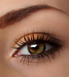 Stunning Winter Autumn Eye Makeup