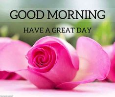 Good Morning Picture 2019 : Happy New Year 2020 Gud Morning Pics, Good Morning Couple, Good Morning Beautiful Flowers, Good Morning Beautiful Pictures, Good Morning Roses, Good Morning Images Hd, Good Morning Picture, Good Morning Good Night, Morning Pictures