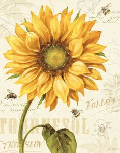 Trademark Fine Art 'Under the Sun I' by Lisa Audit Ready to Hang Canvas Wall Art Sunflower Flower, Sunflower Tattoos, Yellow Sunflower, Sunflower Quotes, Sunflower Clipart, Art Floral, Floral Wall, Canvas Artwork, Canvas Wall Art