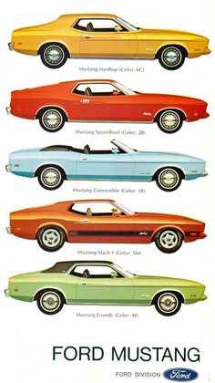 Ford Mustangs - my very first car was a Mustang Grande in the orange color of the second one pictured. Long live Louise!