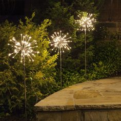 I love these sparkler like pathway lights for a garden path or outdoor landscape lighting!