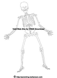 Day+Of+The+Dead+Coloring | Skeleton Coloring Page for Halloween or Day of the Dead
