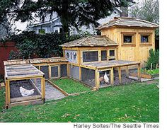 chicken coop - This looks like a mansion for chickens. Chicken Coop Designs, Fancy Chicken Coop, Chicken Coup, Chicken Garden, Chicken Coop Plans, Chicken Runs, Chicken Wire, Fancy Chickens, Keeping Chickens