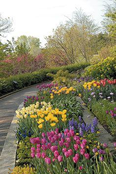 Nice Visit Your Local Botanical Garden